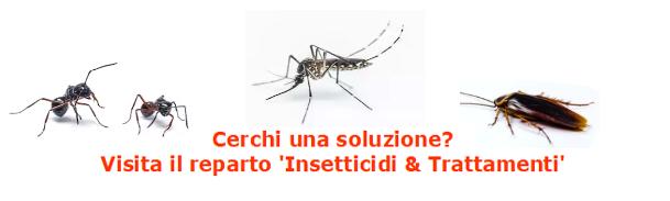 insetticidi e trattamenti zanzare formiche scarafaggi blatte ferramenta rizzo a roma zona talenti